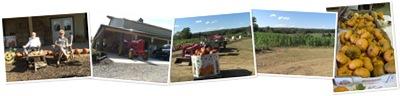 View October Festivities at Buckland Farm Market